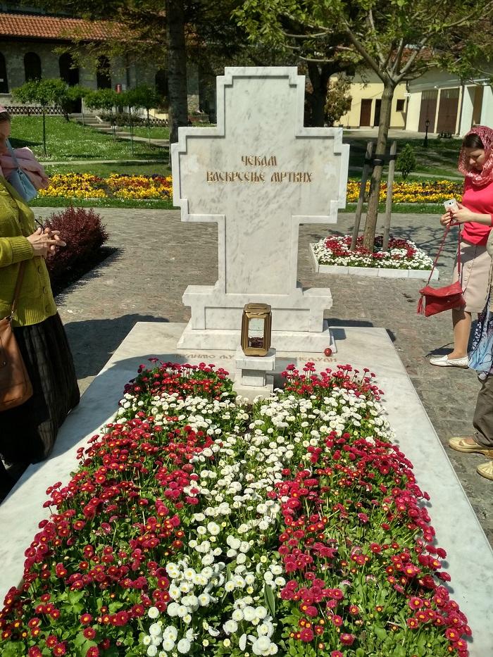 Сербия_ (13)